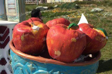 ماکت سیب هفت سین
